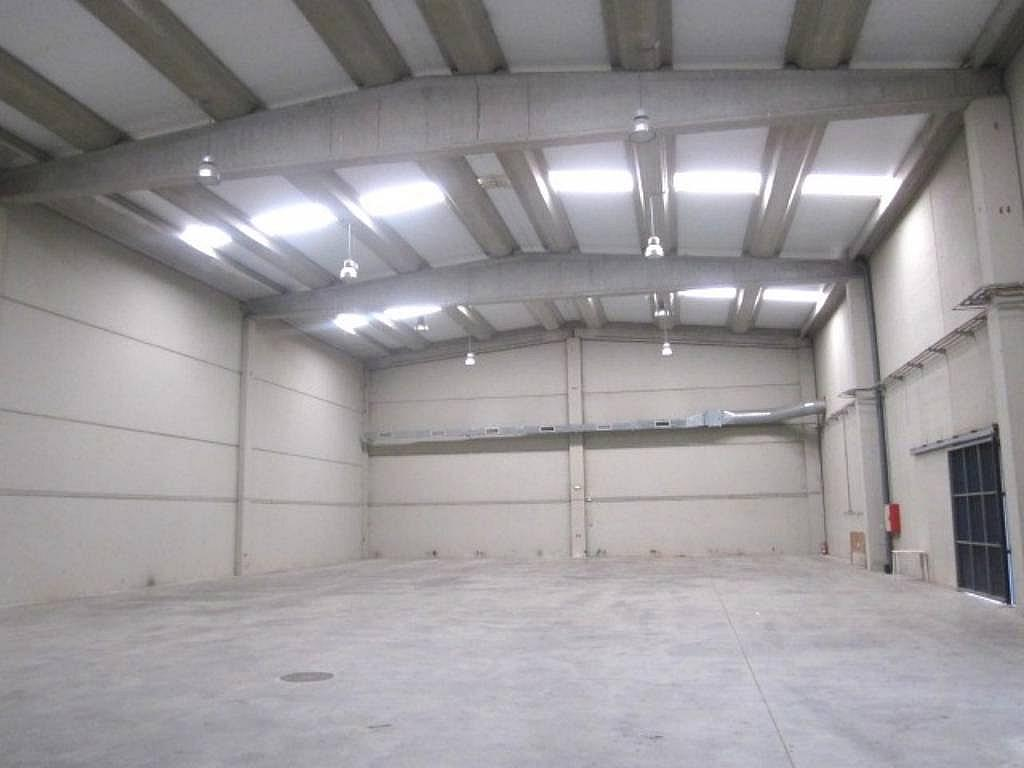 IMG_2604 - Nave industrial en alquiler en calle Jose Agustin Goytosolo, Gran Via LH en Hospitalet de Llobregat, L´ - 266475480