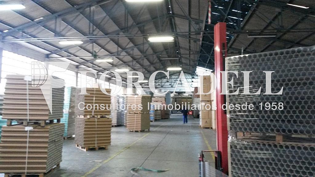20150204_120555 - Nave industrial en alquiler opción compra en calle Berguedà, Sant Quirze del Vallès - 266469252