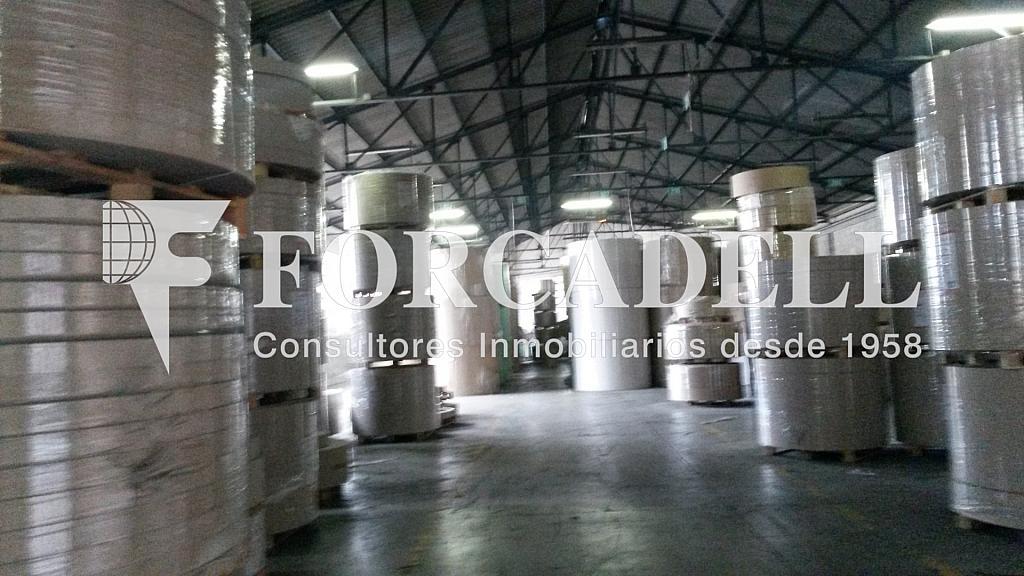 20150204_120852 - Nave industrial en alquiler opción compra en calle Berguedà, Sant Quirze del Vallès - 266469255