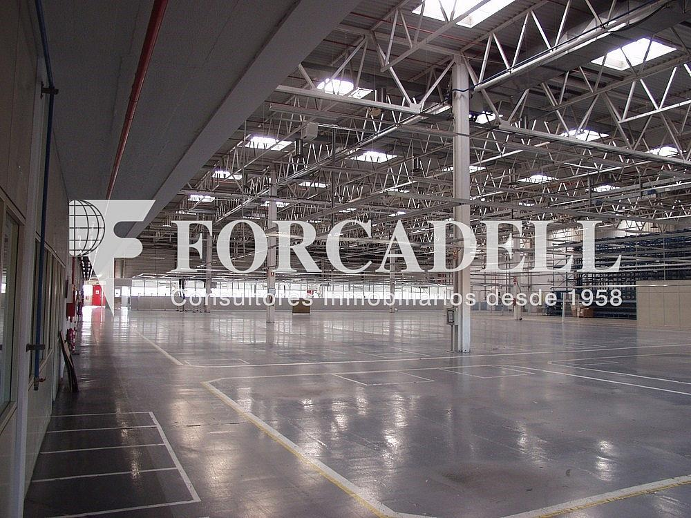 P1033252 - Nave industrial en alquiler en calle Universitat Autònoma, Cerdanyola del Vallès - 266474805