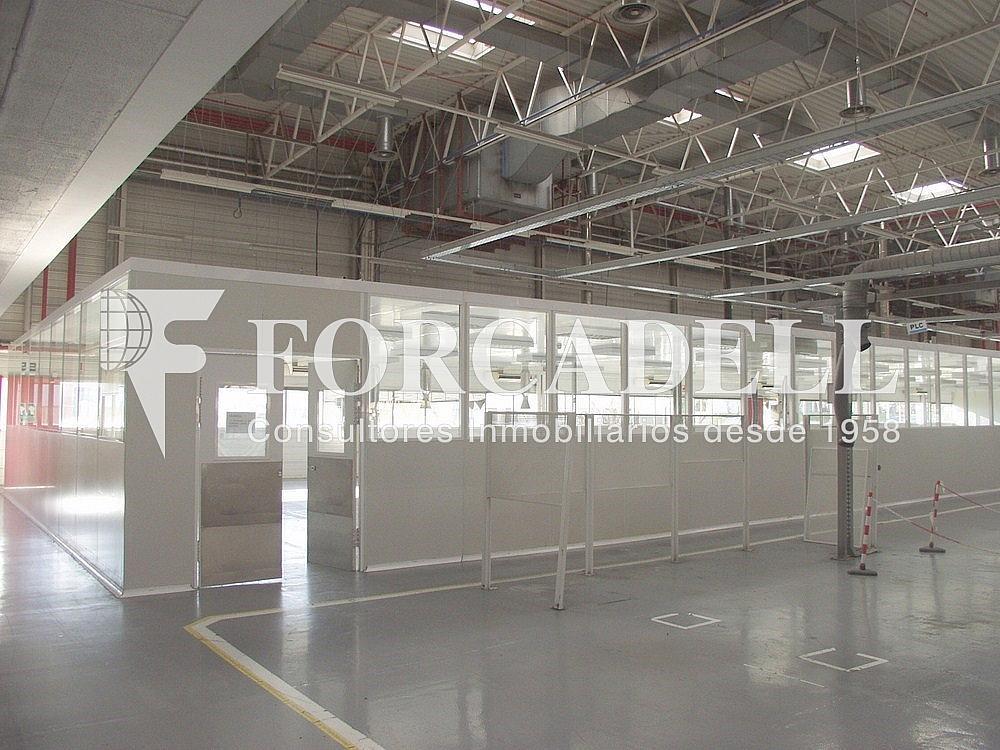 P1033256 - Nave industrial en alquiler en calle Universitat Autònoma, Cerdanyola del Vallès - 266474808