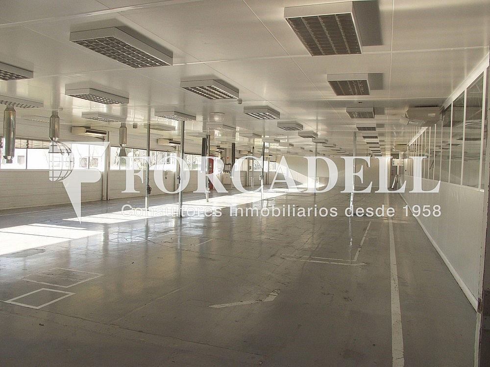 P1033257 - Nave industrial en alquiler en calle Universitat Autònoma, Cerdanyola del Vallès - 266474811