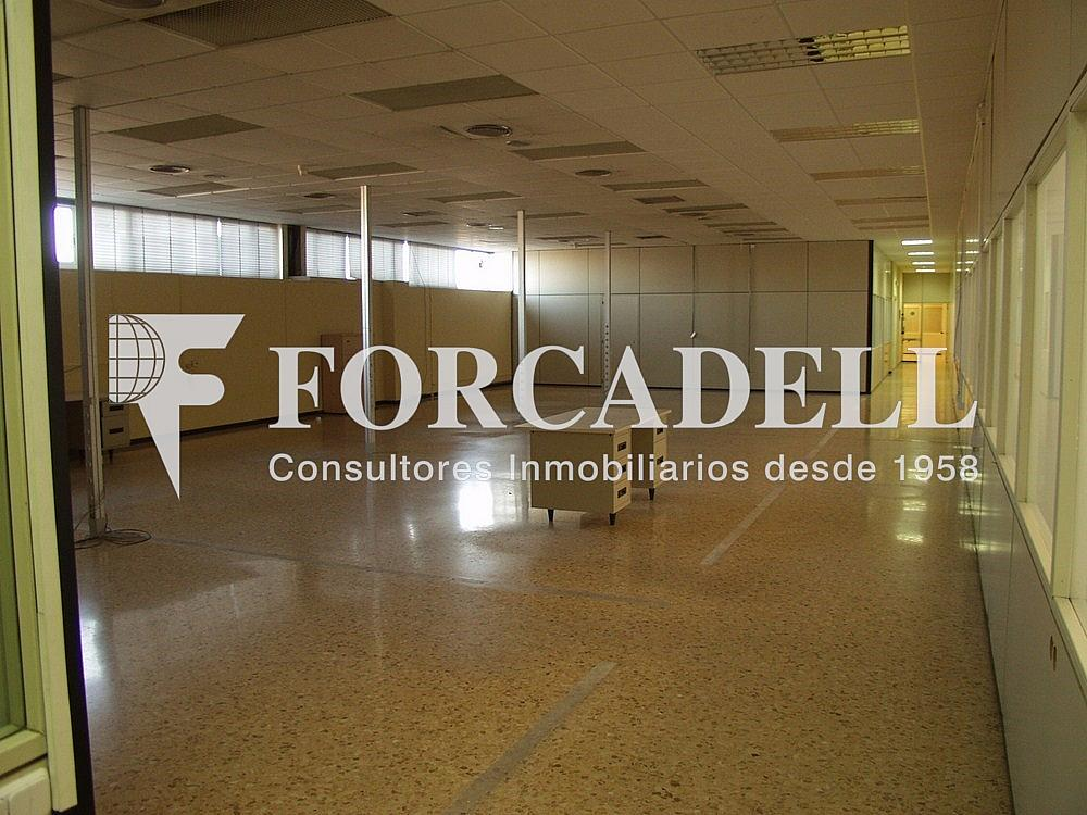 P1033348 - Nave industrial en alquiler en calle Universitat Autònoma, Cerdanyola del Vallès - 266474820