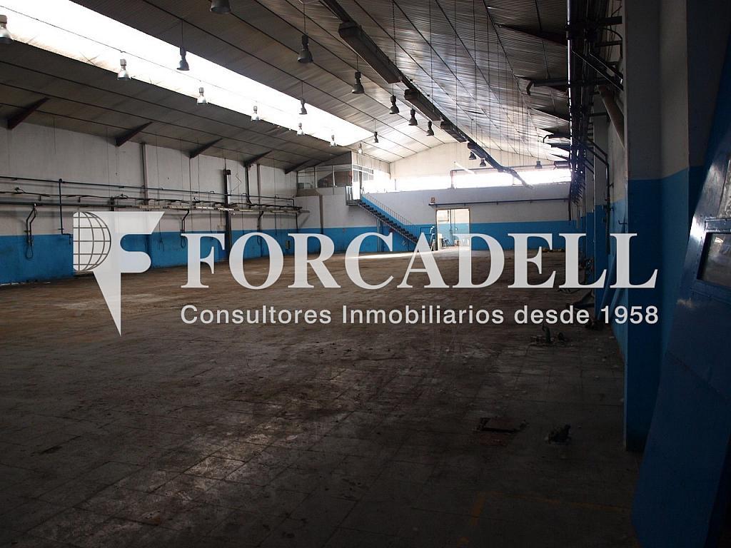 P2058233 - Nave industrial en alquiler en calle Argelagues, Lliçà de Vall - 266470458