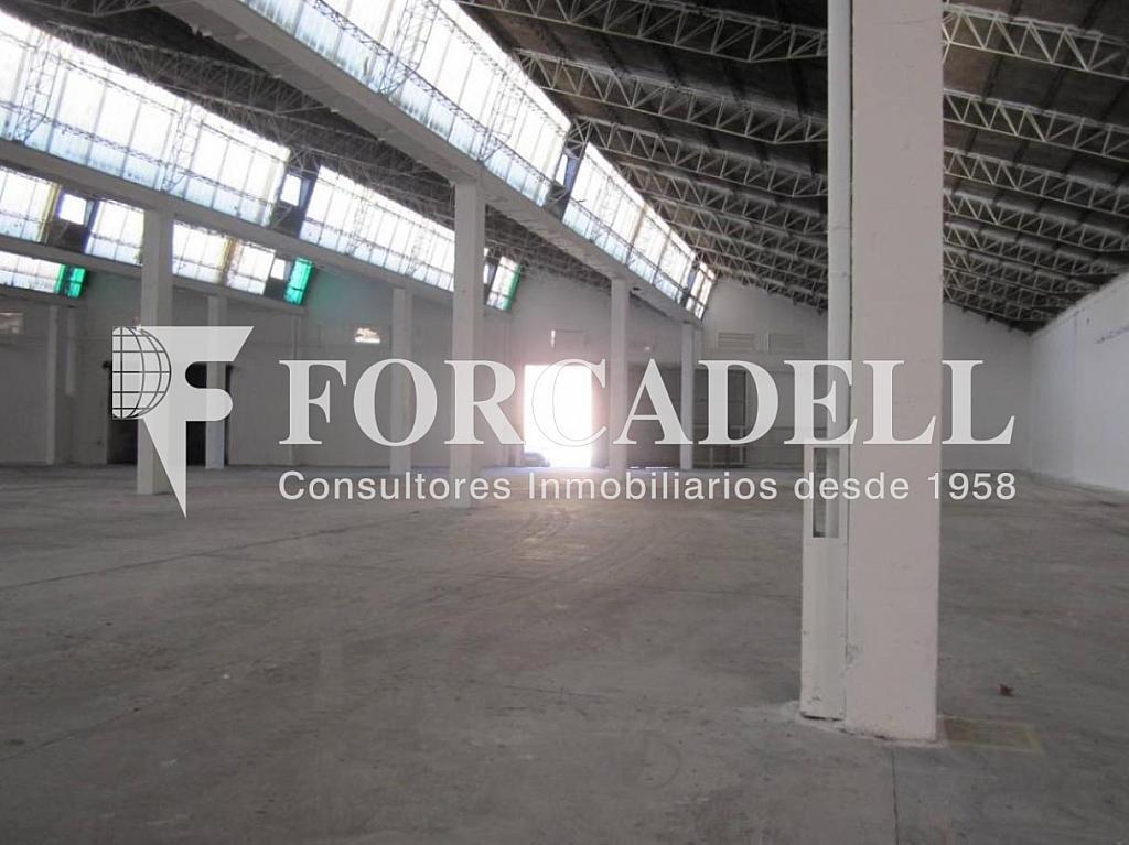 28-01-2013 005 - Nave industrial en alquiler en calle Mare de Deu del Port, El Raval en Barcelona - 266471763