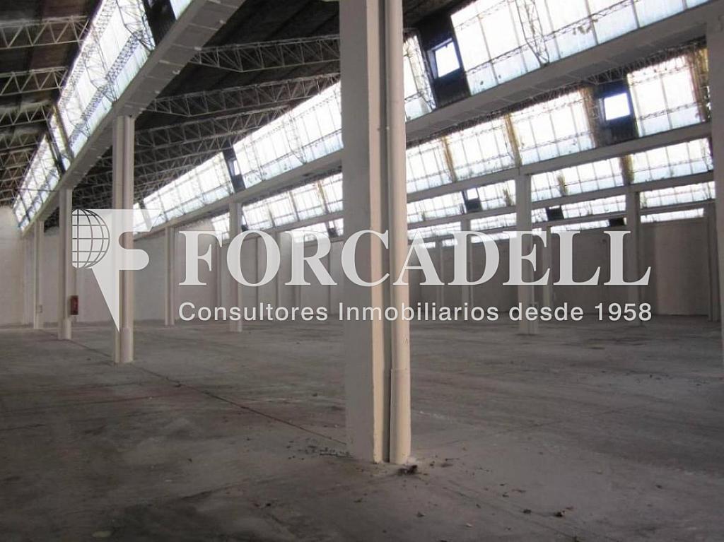 28-01-2013 002 - Nave industrial en alquiler en calle Mare de Deu del Port, El Raval en Barcelona - 266471772