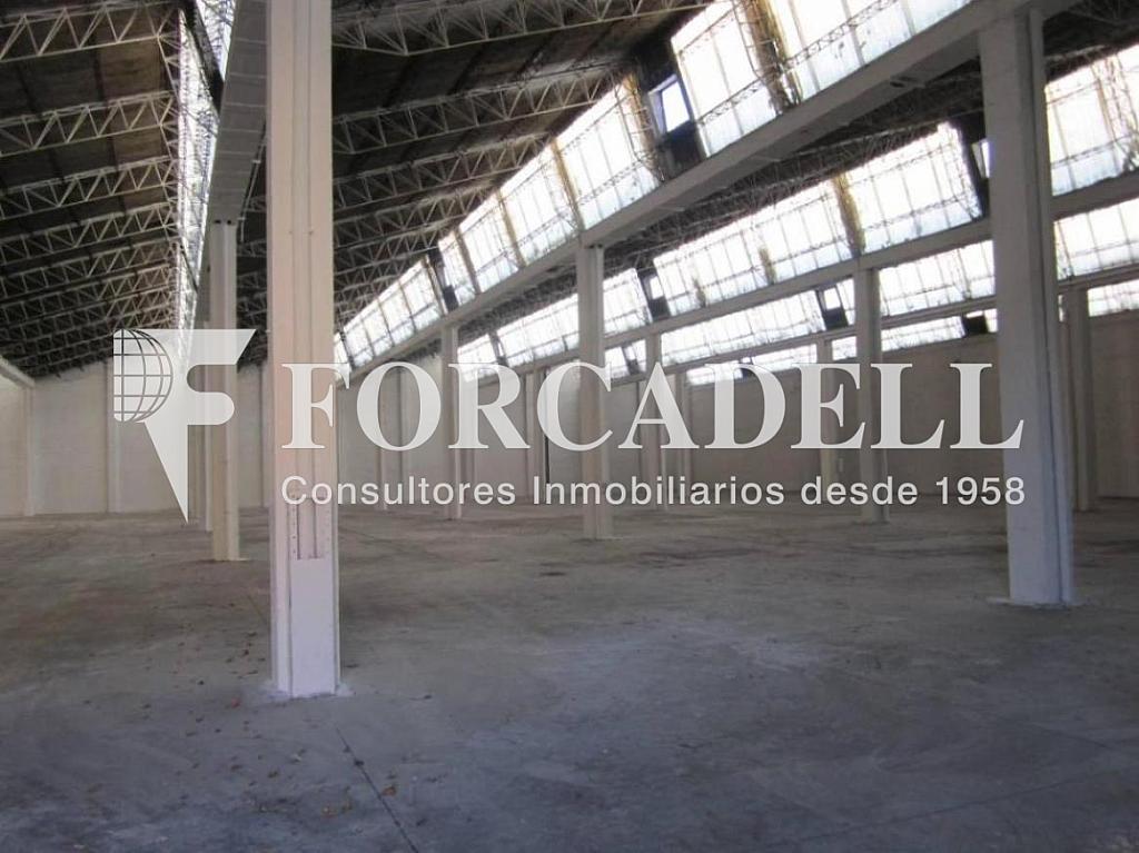 28-01-2013 001 - Nave industrial en alquiler en calle Mare de Deu del Port, El Raval en Barcelona - 266471778