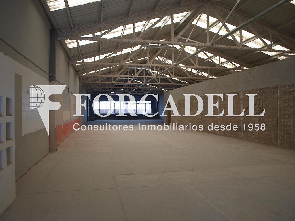 P3189777 - Nave industrial en alquiler en calle Joanot Martorell, Granollers - 266472864