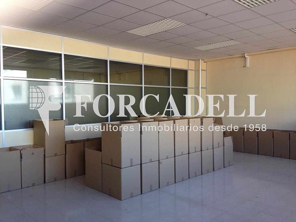 IMG_0640 - Nave industrial en alquiler en calle Ca la Madrona, Mataró - 266465679