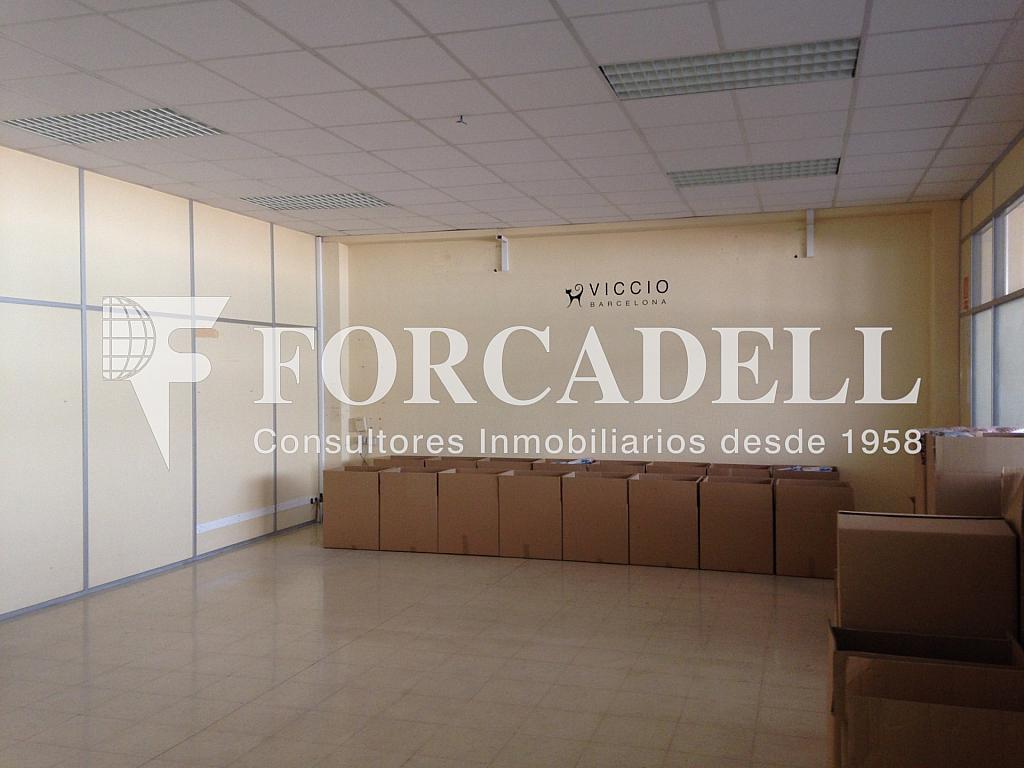 IMG_0642 - Nave industrial en alquiler en calle Ca la Madrona, Mataró - 266465682
