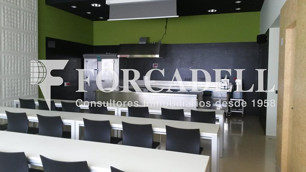 20140626_101221 - Nave industrial en alquiler en calle Riera de Llitrà, Vilafranca del Penedès - 266471166