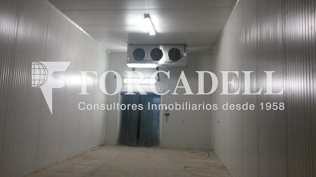 20140626_100243 - Nave industrial en alquiler en calle Riera de Llitrà, Vilafranca del Penedès - 266471169