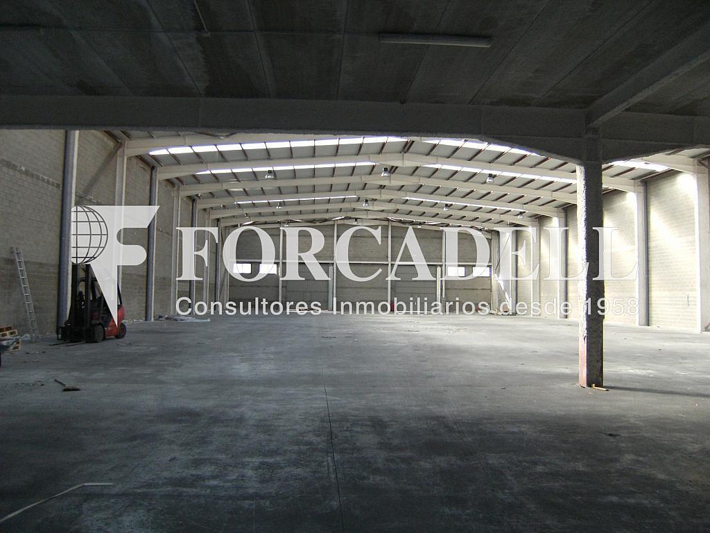 21-01-2014 018 - Nave industrial en alquiler en calle Newton, Sant Esteve Sesrovires - 266476161