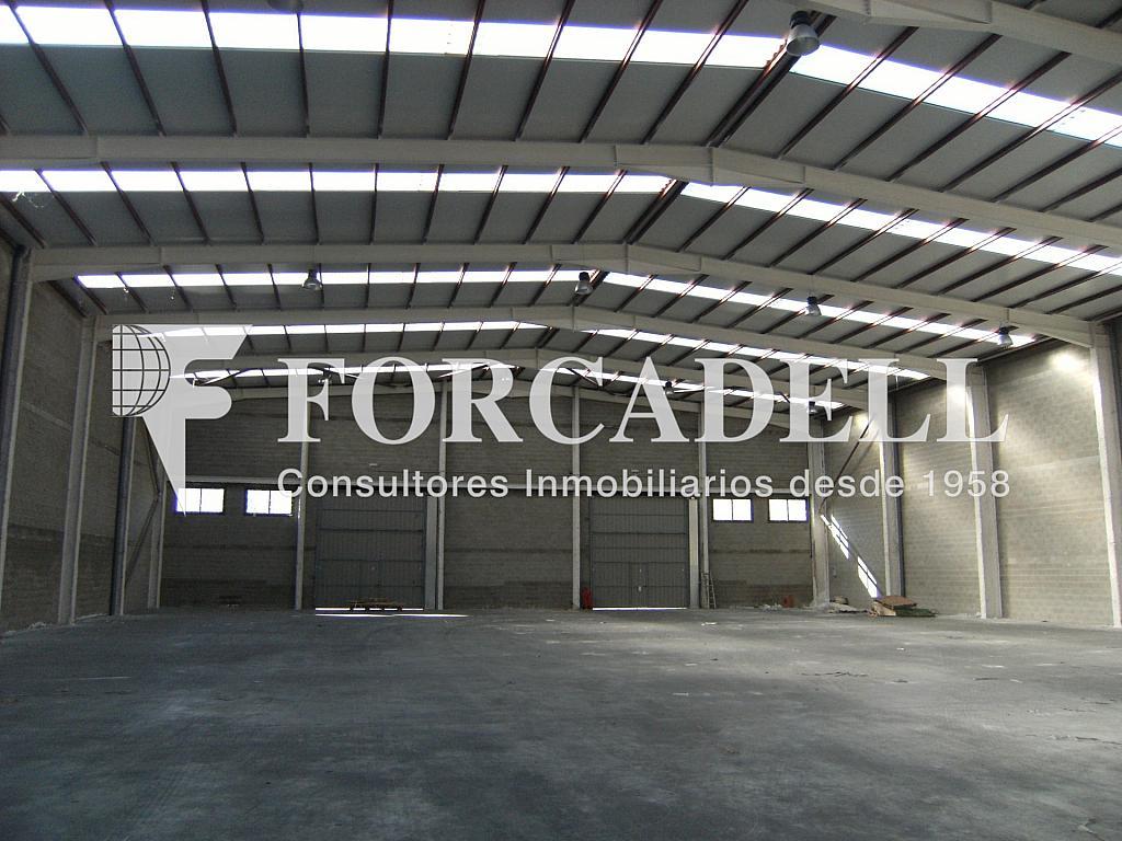 21-01-2014 019 - Nave industrial en alquiler en calle Newton, Sant Esteve Sesrovires - 266476164