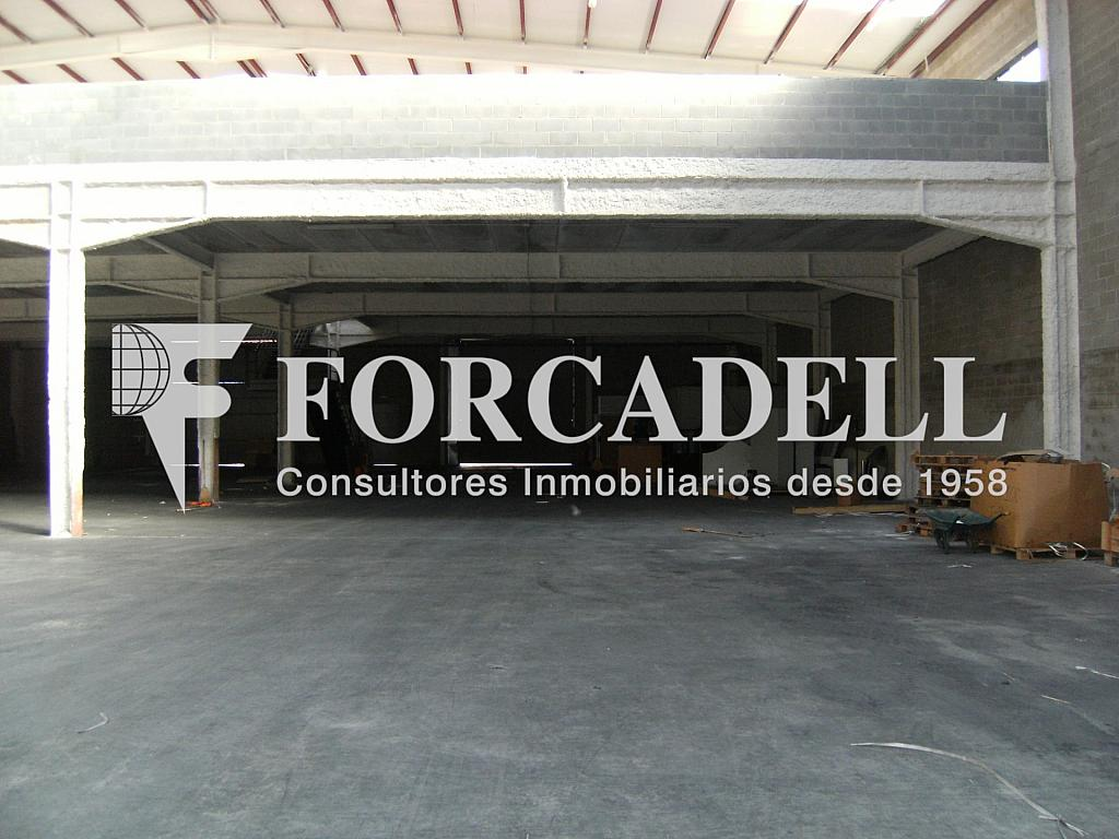 21-01-2014 020 - Nave industrial en alquiler en calle Newton, Sant Esteve Sesrovires - 266476167