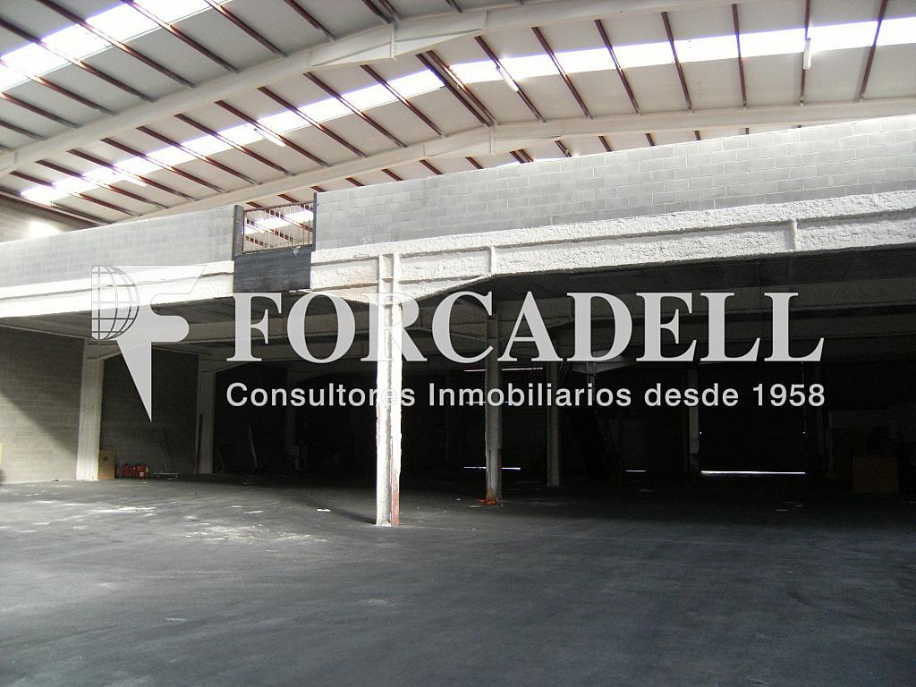 21-01-2014 021 - Nave industrial en alquiler en calle Newton, Sant Esteve Sesrovires - 266476170