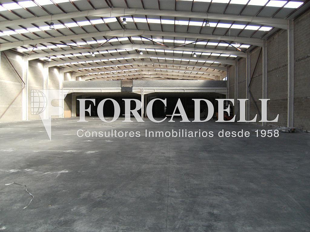 21-01-2014 022 - Nave industrial en alquiler en calle Newton, Sant Esteve Sesrovires - 266476173