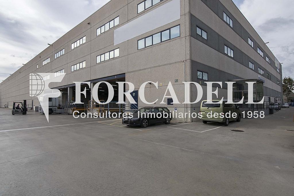 DSC_3827 - Nave industrial en alquiler en calle Maresme, Cornellà de Llobregat - 360576204