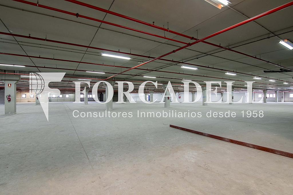 DSC_3800 - Nave industrial en alquiler en calle Maresme, Cornellà de Llobregat - 360576207