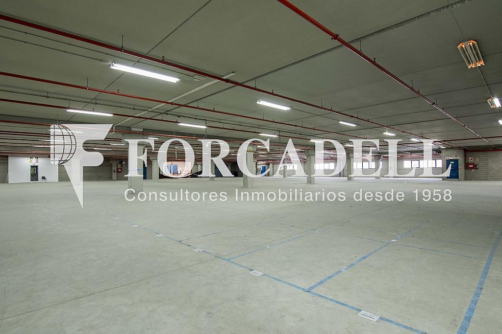 DSC_3789 - Nave industrial en alquiler en calle Maresme, Cornellà de Llobregat - 360576222