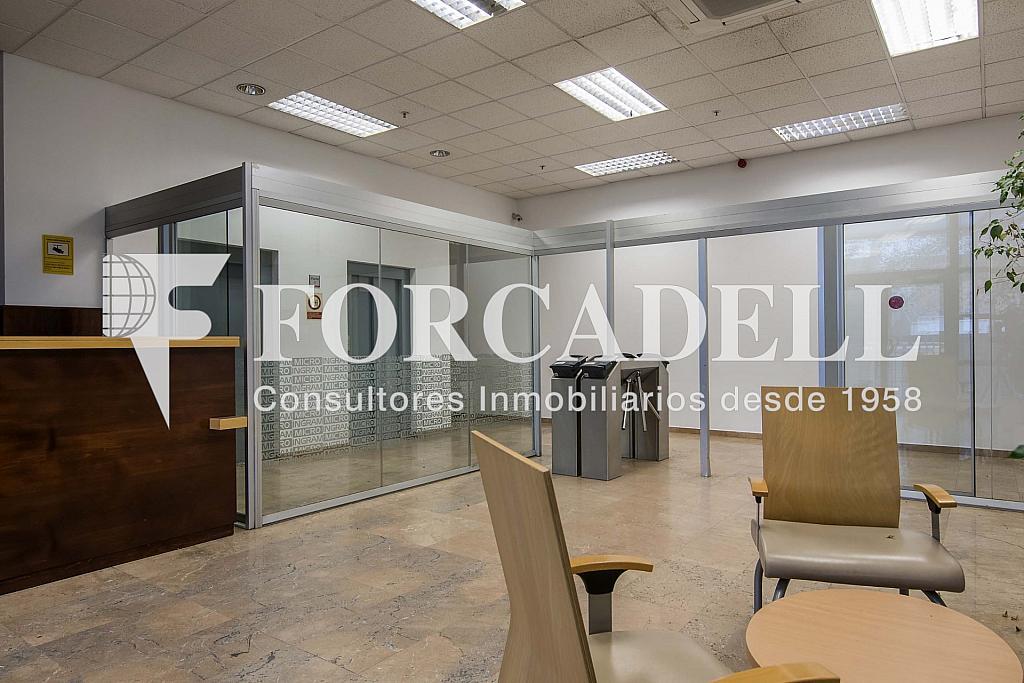 DSC_3818 - Nave industrial en alquiler en calle Maresme, Cornellà de Llobregat - 360576258