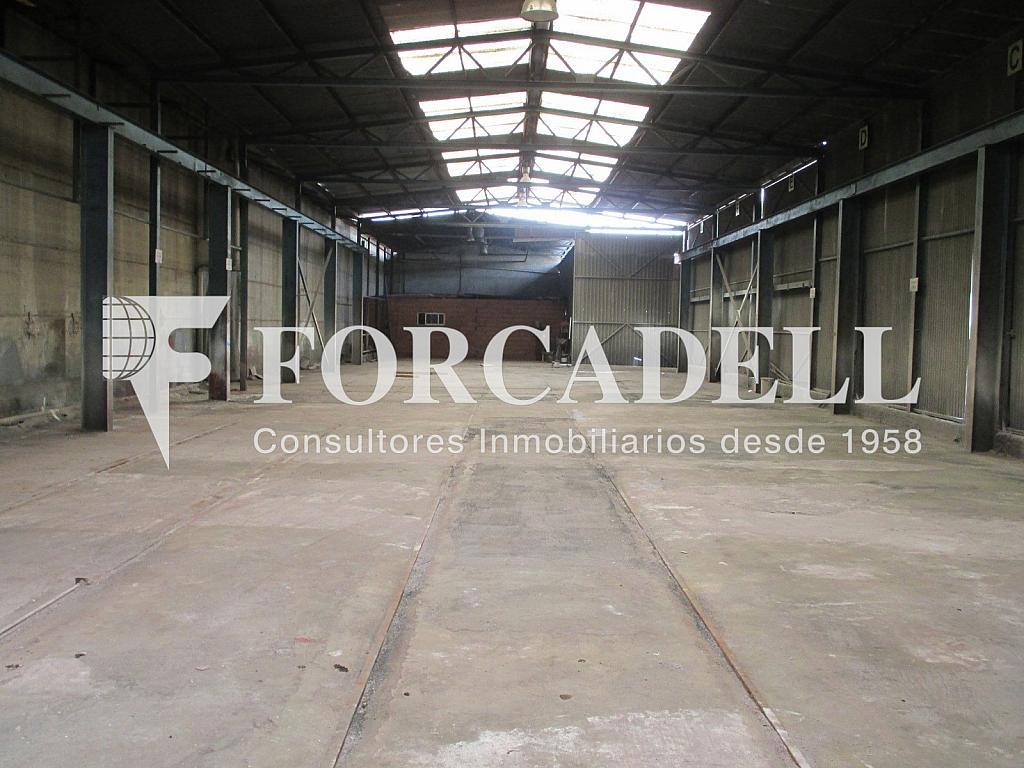 IMG_0064 - Nave industrial en alquiler en calle Tenes, Parets del Vallès - 266474271