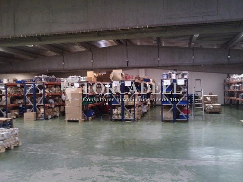 P0141_300310 - Nave industrial en alquiler en calle Acustica, Castellbisbal - 266475162