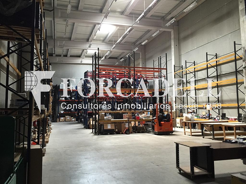 IMG_1811 - Nave industrial en alquiler en calle Botanica, Gran Via LH en Hospitalet de Llobregat, L´ - 266471133
