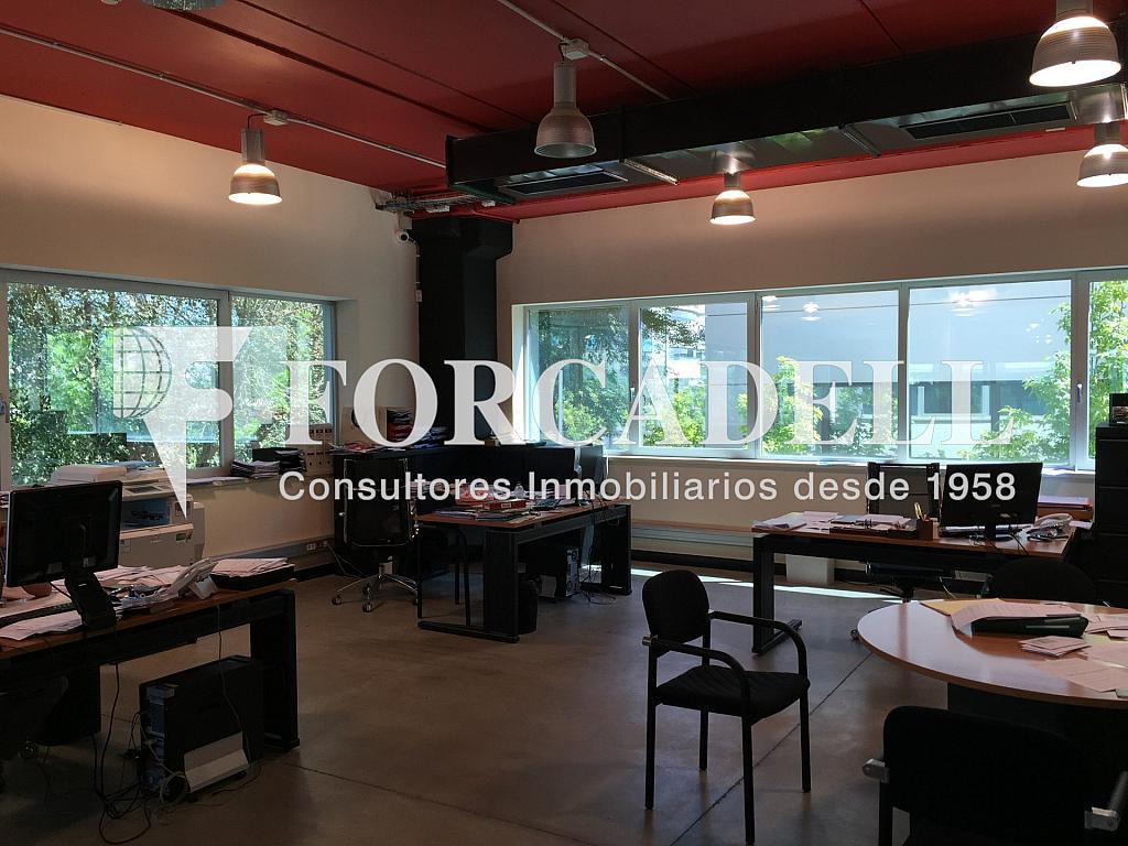 IMG_1803 - Nave industrial en alquiler en calle Botanica, Gran Via LH en Hospitalet de Llobregat, L´ - 266471139