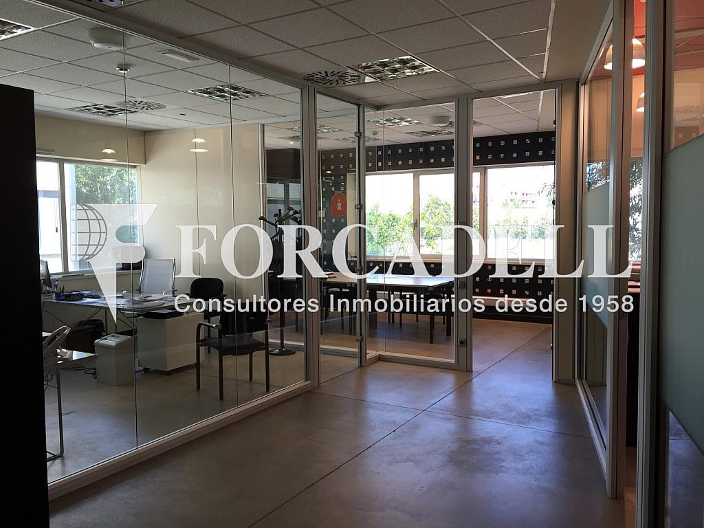 IMG_1804 - Nave industrial en alquiler en calle Botanica, Gran Via LH en Hospitalet de Llobregat, L´ - 266471142