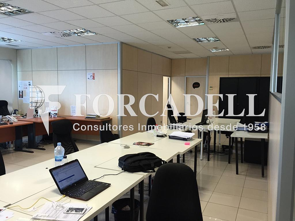IMG_1806 - Nave industrial en alquiler en calle Botanica, Gran Via LH en Hospitalet de Llobregat, L´ - 266471148