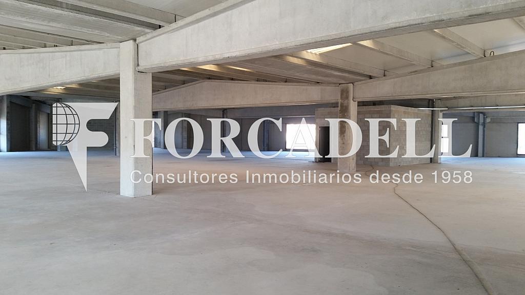 20150112_155236 - Nave industrial en alquiler en calle Pins Roses, Cardedeu - 266470443