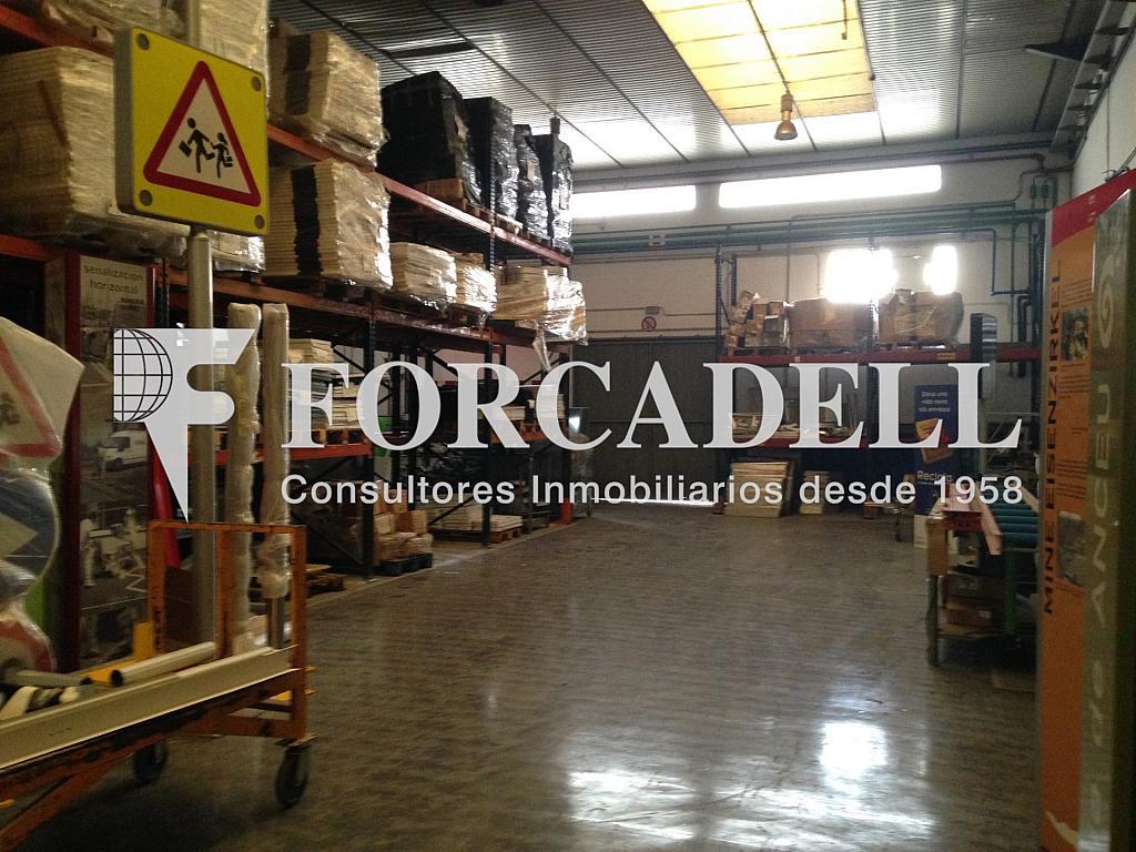 IMG_2324 - Nave industrial en alquiler en calle Anoia, Santa Perpètua de Mogoda - 269872909