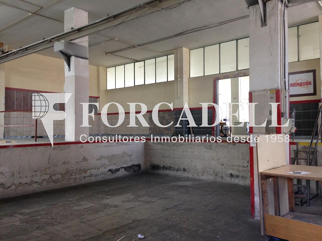 IMG_2720 - Nave industrial en alquiler en calle De Barcelona, Molins de Rei - 266473359