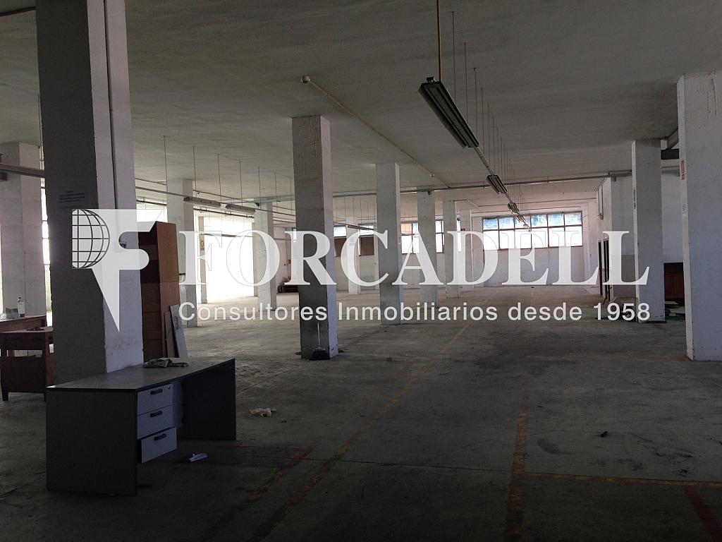 IMG_2721 - Nave industrial en alquiler en calle De Barcelona, Molins de Rei - 266473362