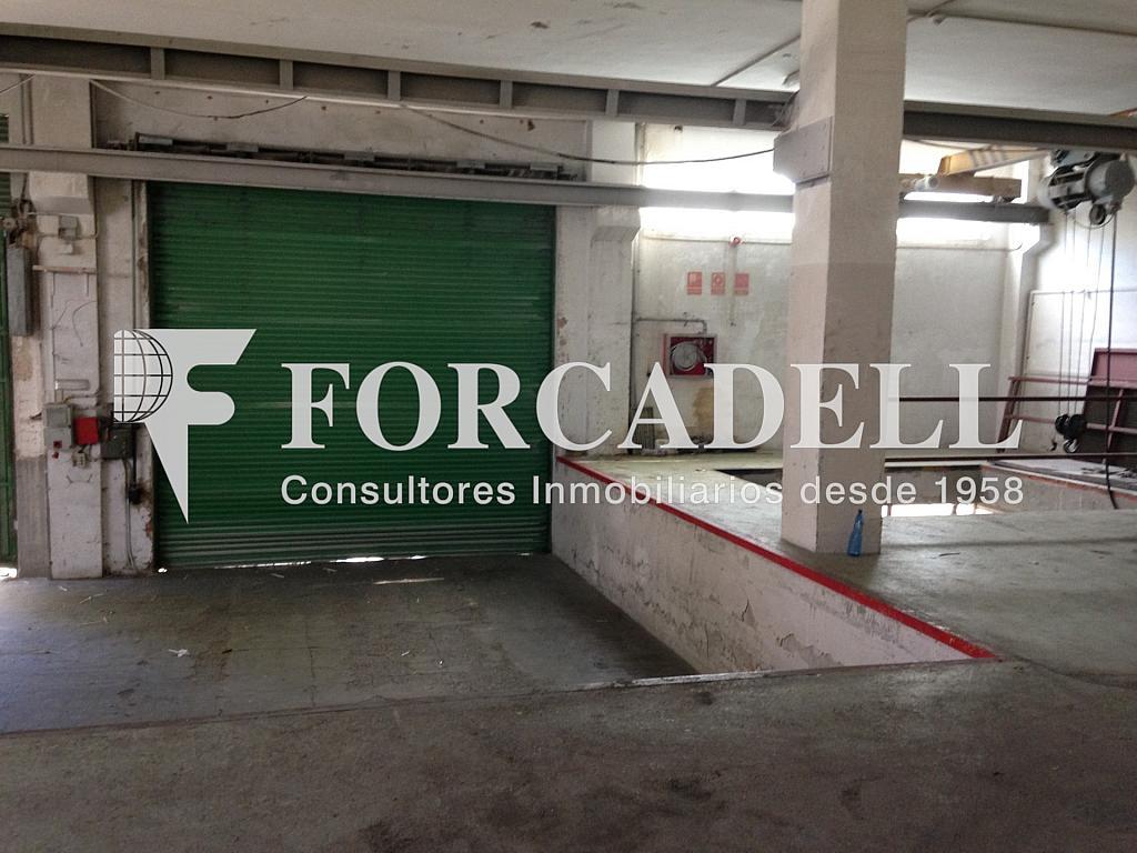 IMG_2723 - Nave industrial en alquiler en calle De Barcelona, Molins de Rei - 266473365