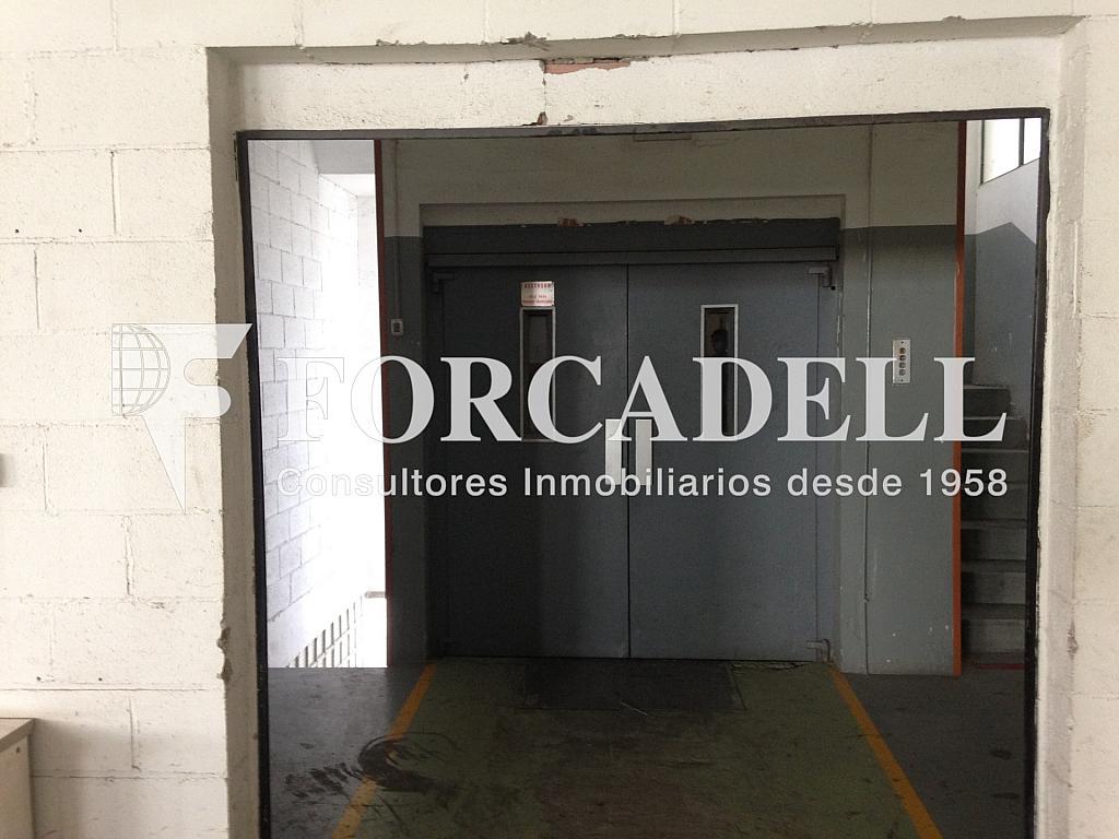 IMG_2722 - Nave industrial en alquiler en calle De Barcelona, Molins de Rei - 266473368
