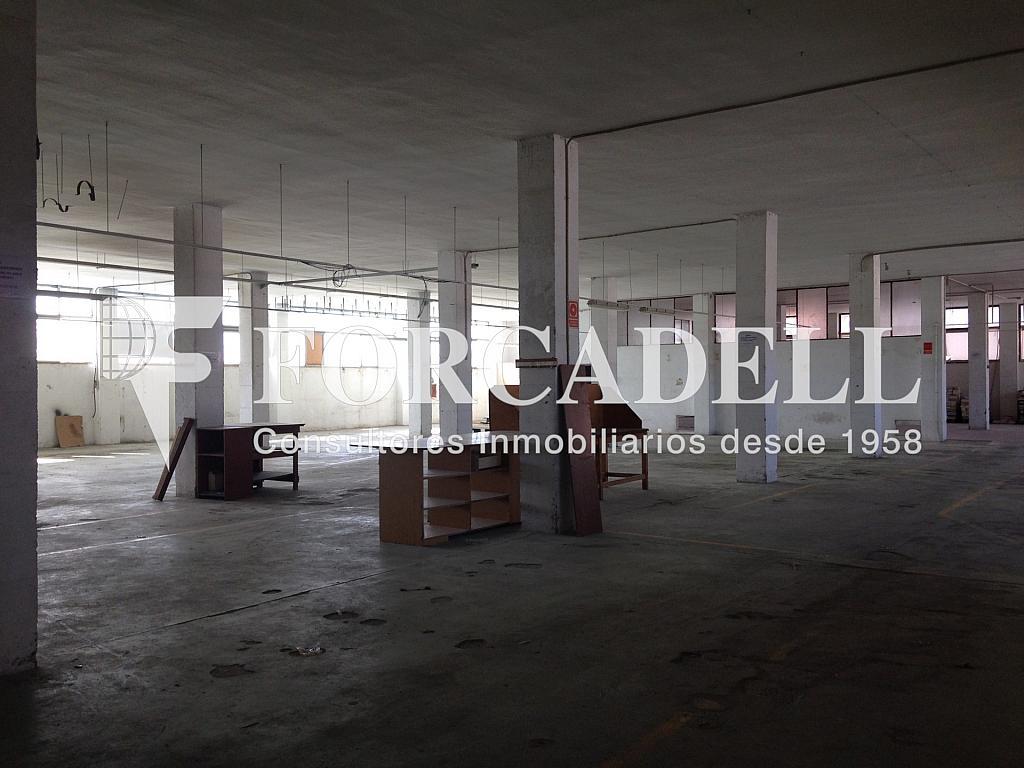 IMG_2730 - Nave industrial en alquiler en calle De Barcelona, Molins de Rei - 266473371