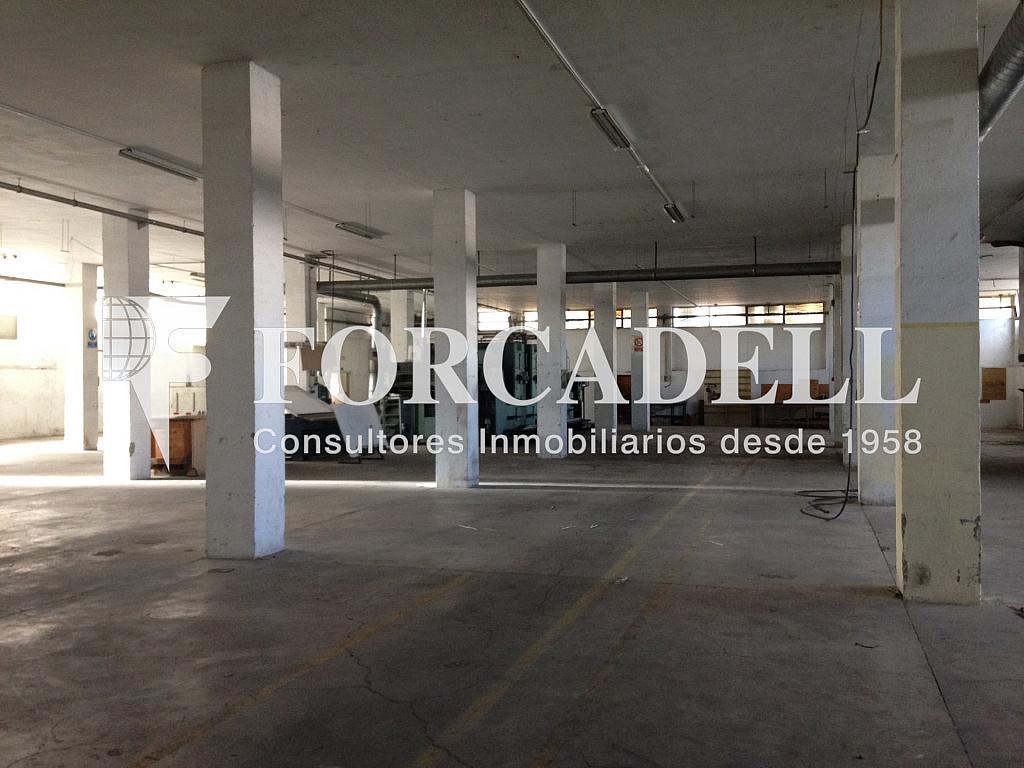 IMG_2734 - Nave industrial en alquiler en calle De Barcelona, Molins de Rei - 266473374