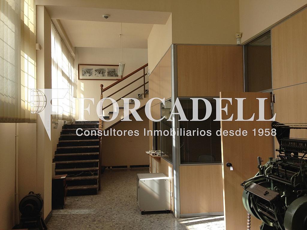 IMG_2726 - Nave industrial en alquiler en calle De Barcelona, Molins de Rei - 266473377