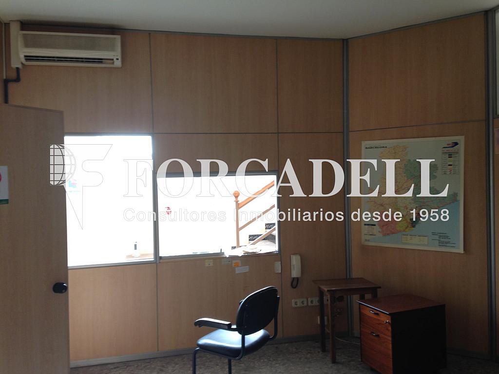 IMG_2727 - Nave industrial en alquiler en calle De Barcelona, Molins de Rei - 266473380