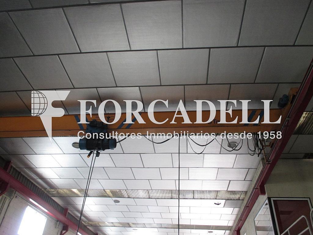 IMG_0507 - Nave industrial en alquiler en calle Cami de Parets, Granollers - 320935970
