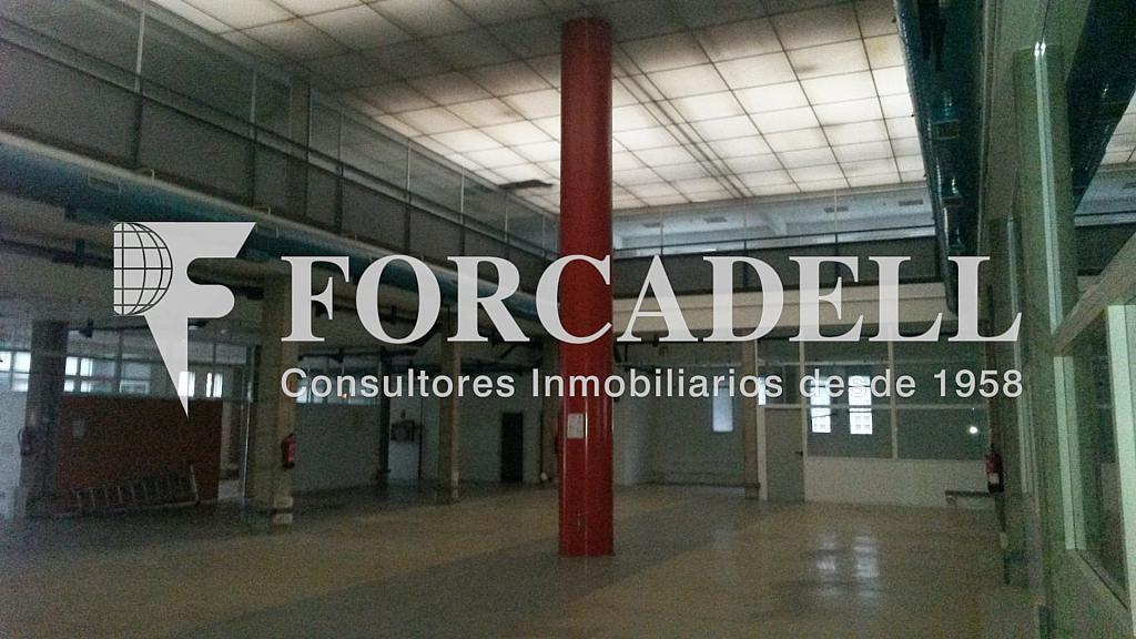 20141126_112629 - Nave industrial en alquiler en calle Santander, El Raval en Barcelona - 266472549