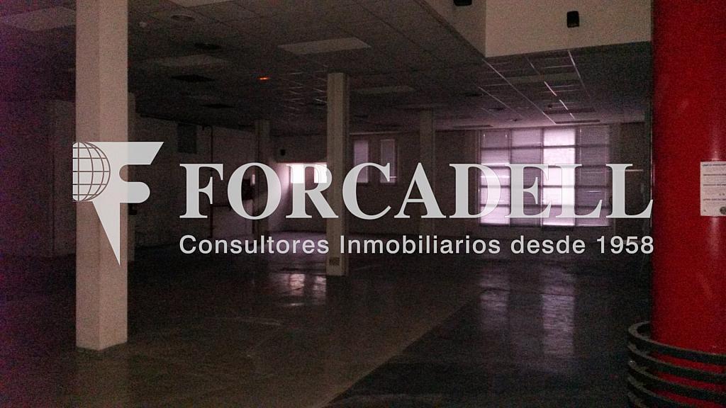 20141126_112847 - Nave industrial en alquiler en calle Santander, El Raval en Barcelona - 266468343