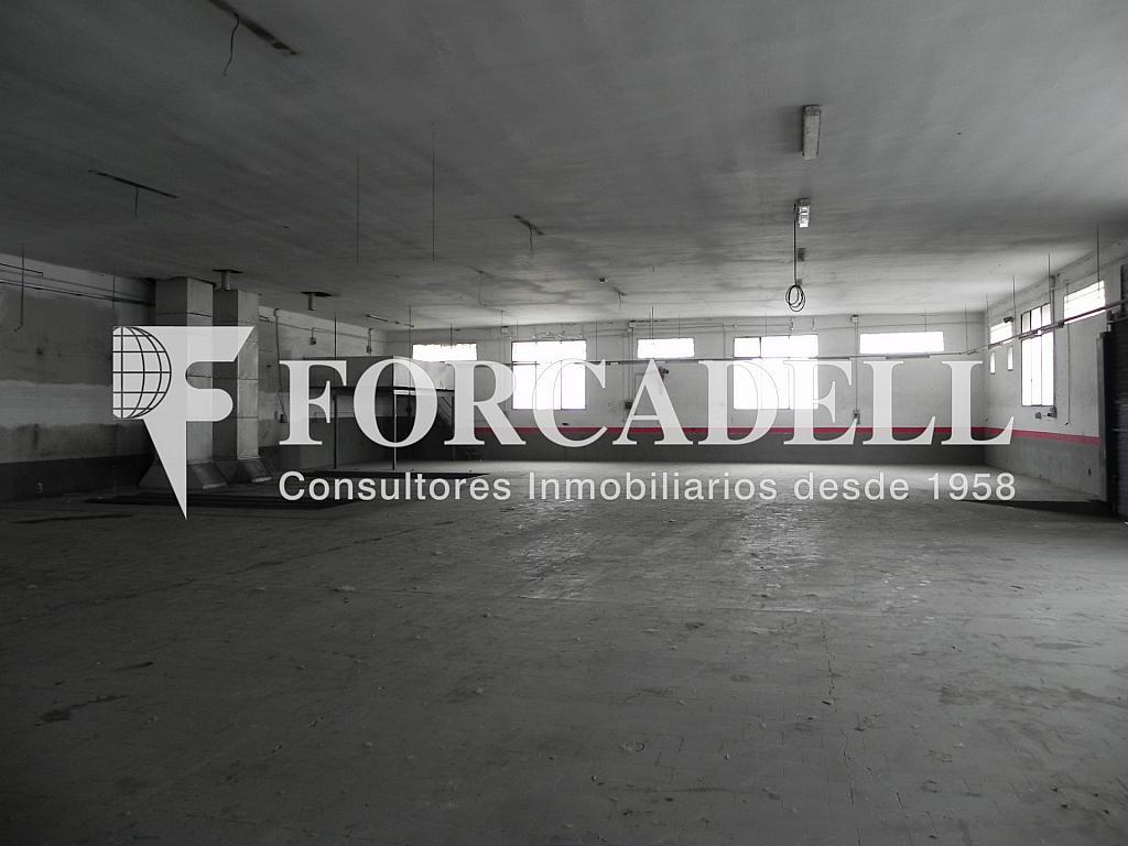 DSCN2047 - Nave en alquiler en calle De Terrassa, Sabadell - 266466180