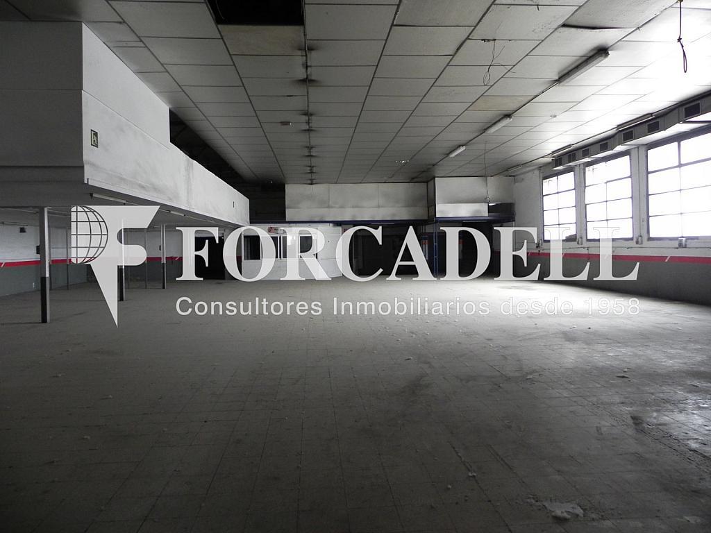 DSCN2055 - Nave en alquiler en calle De Terrassa, Sabadell - 266466183