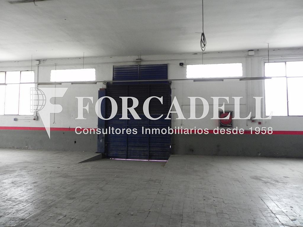DSCN2049 - Nave en alquiler en calle De Terrassa, Sabadell - 266466192