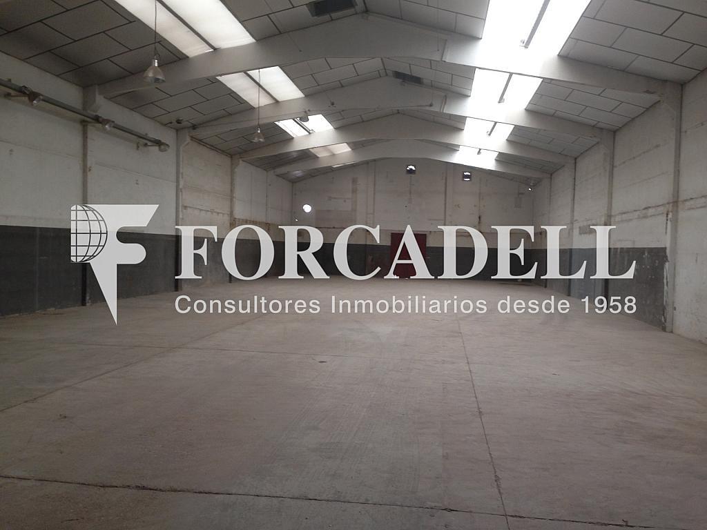 IMG_0423 - Nave industrial en alquiler en calle Emporda, Sant Quirze del Vallès - 319084826