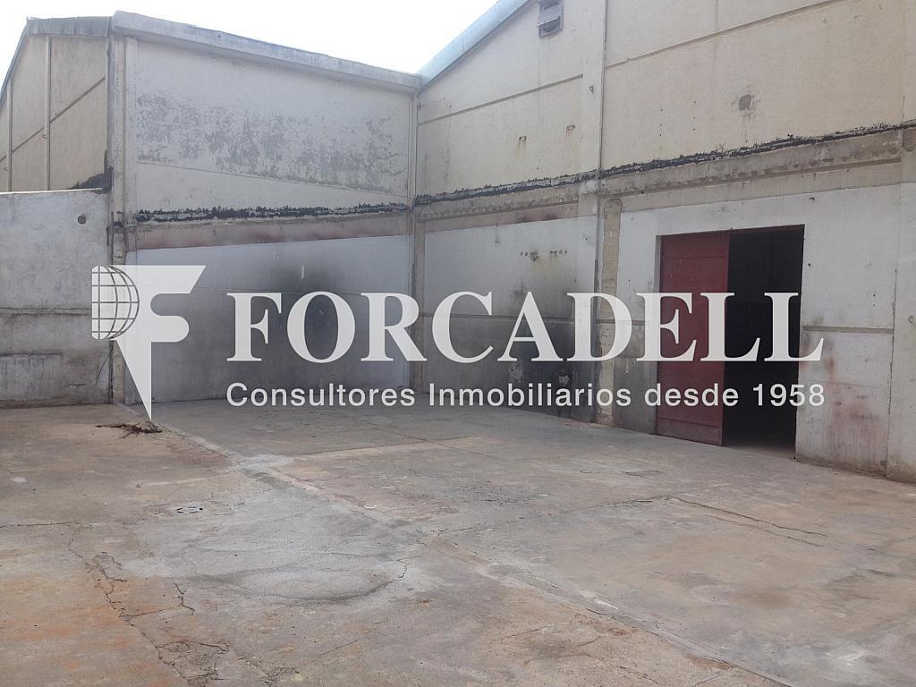IMG_0425 - Nave industrial en alquiler en calle Emporda, Sant Quirze del Vallès - 319084829
