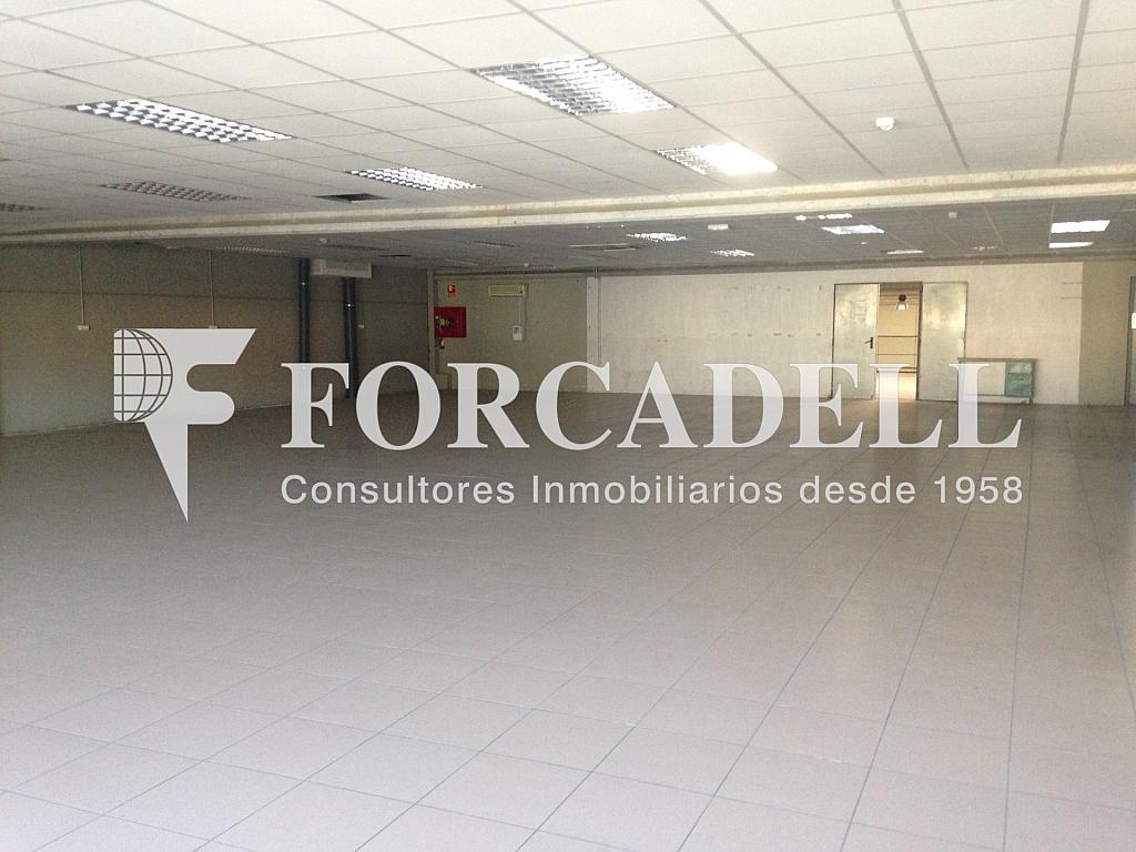 IMG_4751 - Nave industrial en alquiler en calle Enginy, Gavà - 266469042
